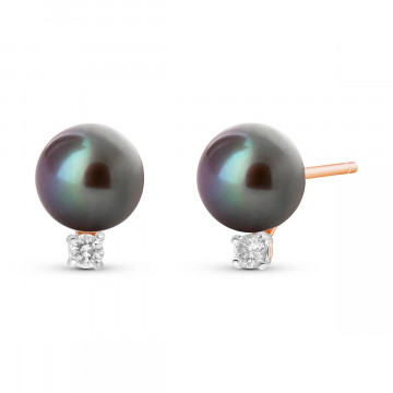 Black Pearl & Diamond Stud Earrings in 9ct Rose Gold